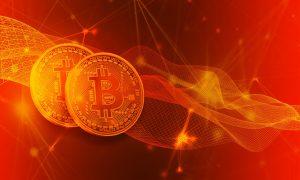 Einsatz des Ripple-Zahlungsnetzes bei Bitcoin Revolution